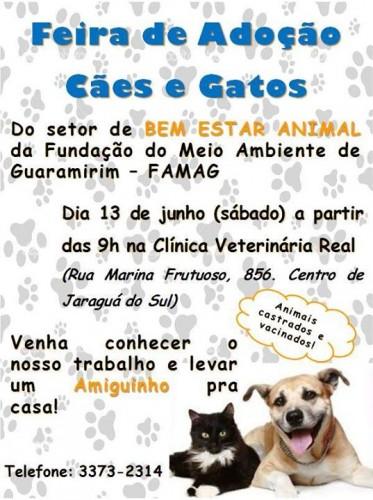 Feira_caesegatos_jaragua_do_sul_guaramirim